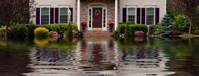 Water Damage Restoration Superior Co Louisville Co